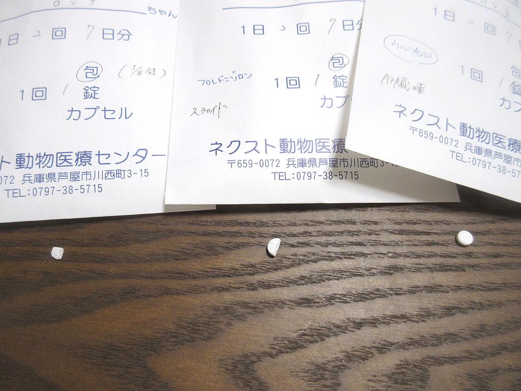 薬の粒の写真。