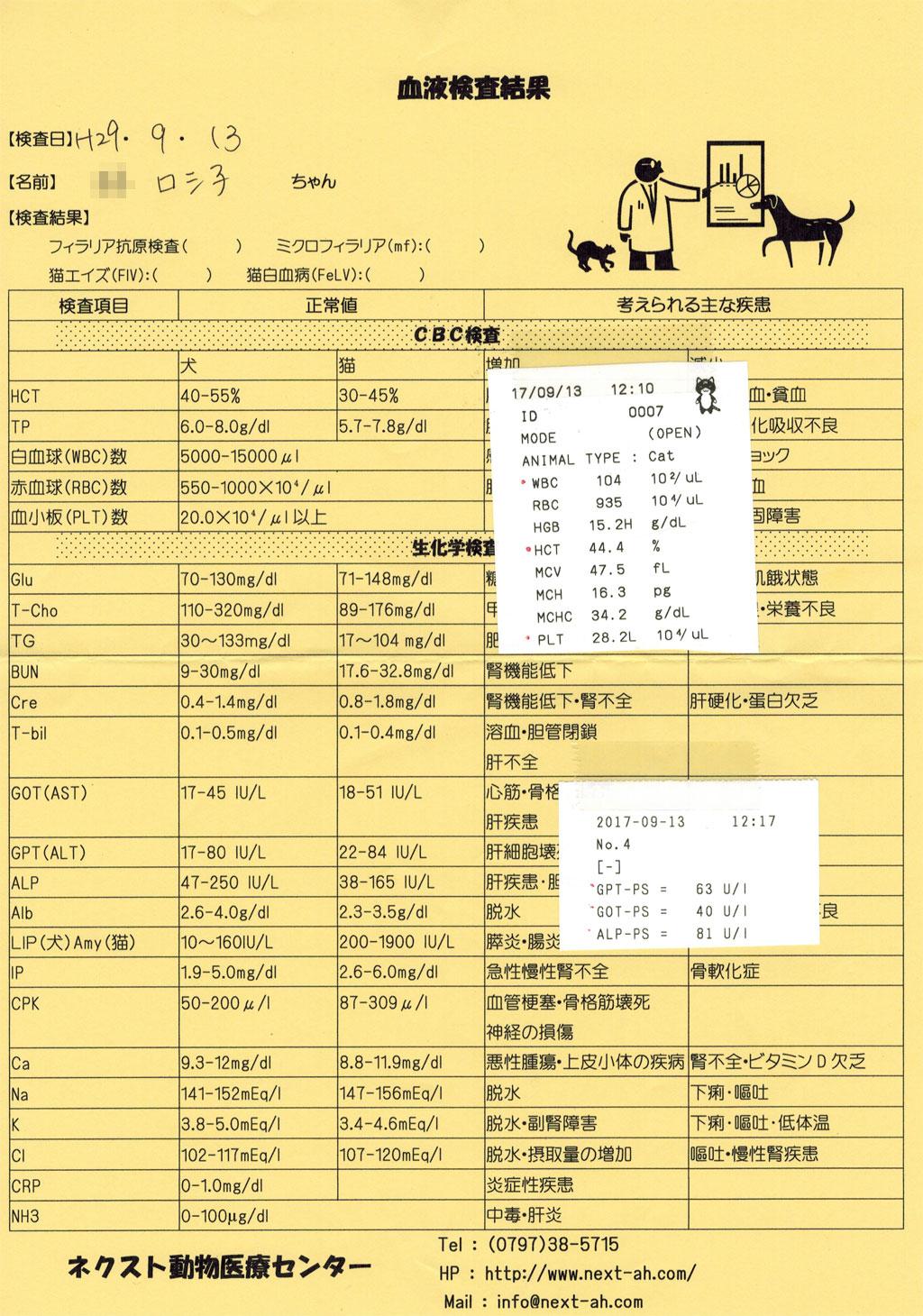 ロシ子の血液検査結果表。