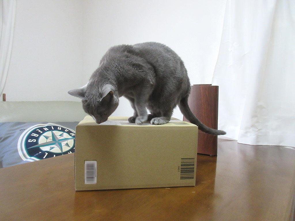 Amazonからの荷物。