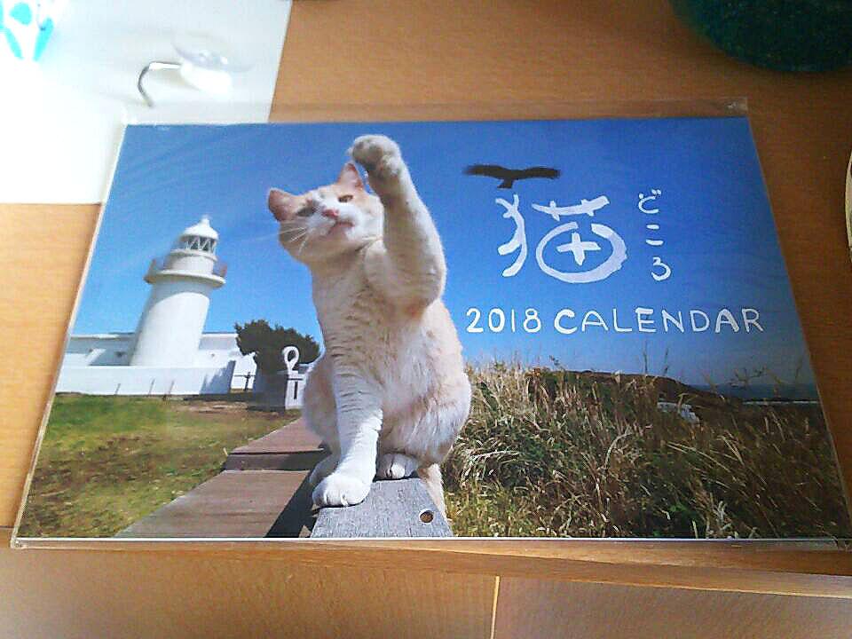 猫のカレンダーを頂きました。