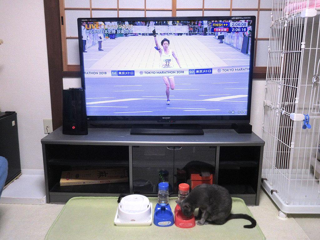 日本新記録の設楽選手。