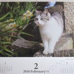 ペットシッターさんからのカレンダー。