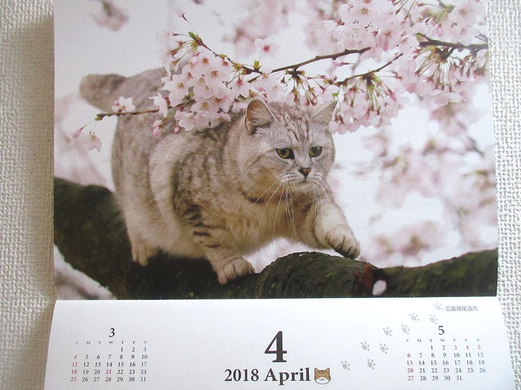 産経新聞の猫カレンダー。