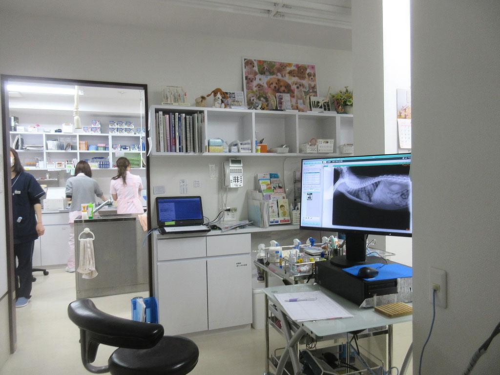 リバティ神戸動物病院の診察室。