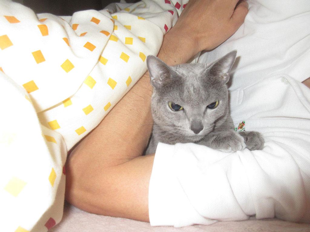 一緒に寝てくれたロシ子ちゃん。