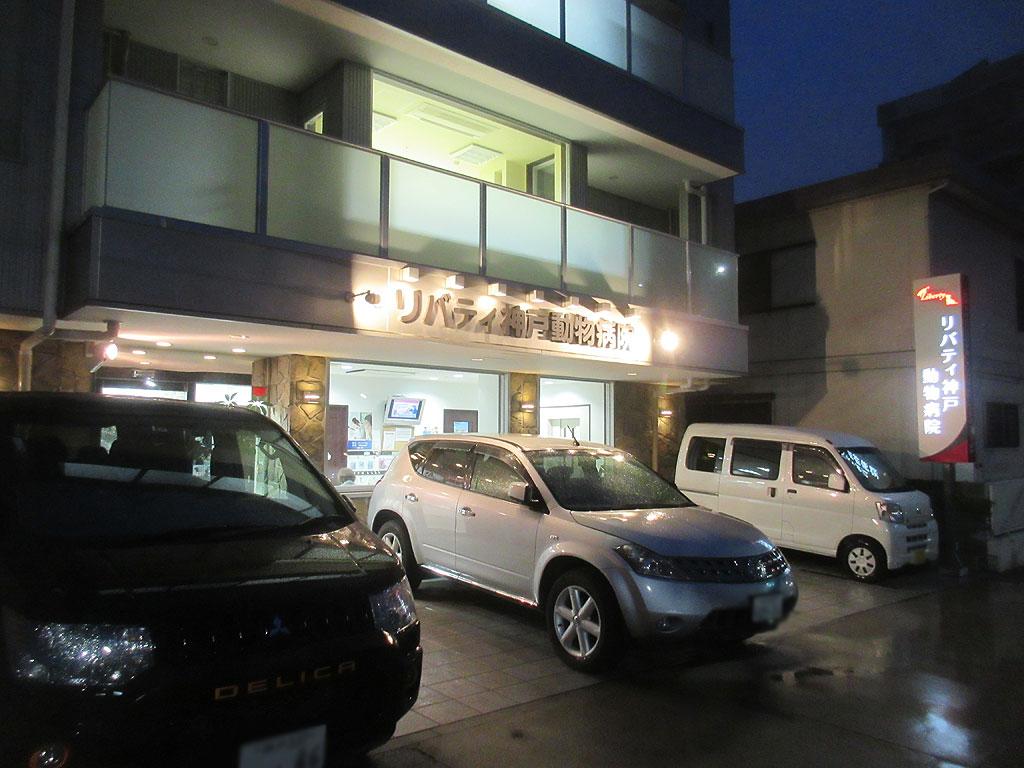 リバティ神戸動物病院さんを後に。