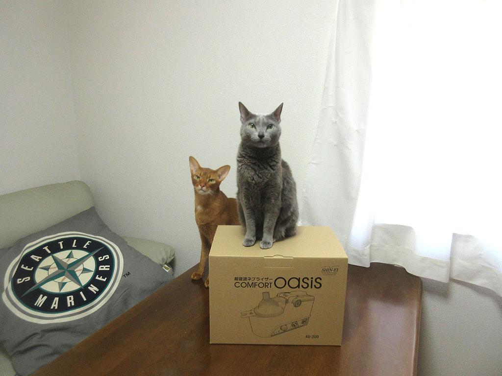 ロシ子とアビのすけと記念撮影。