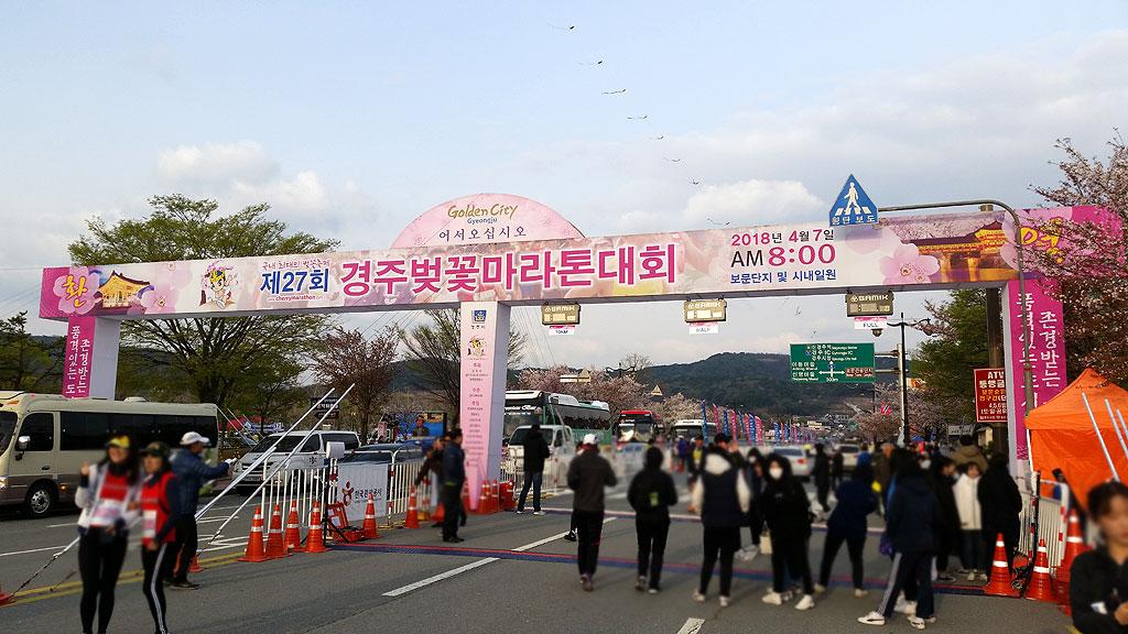 慶州さくらマラソン。