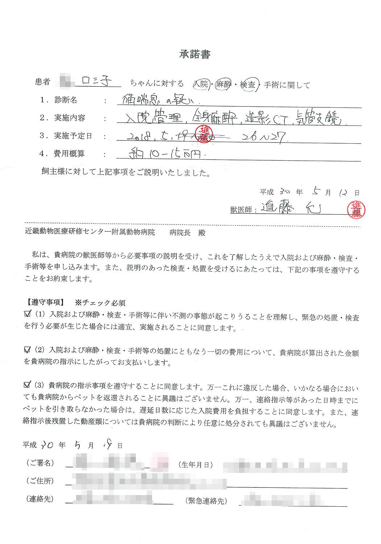 検査の承諾書(変更版)