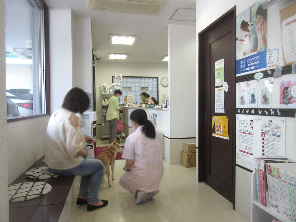 動物病院内の風景。