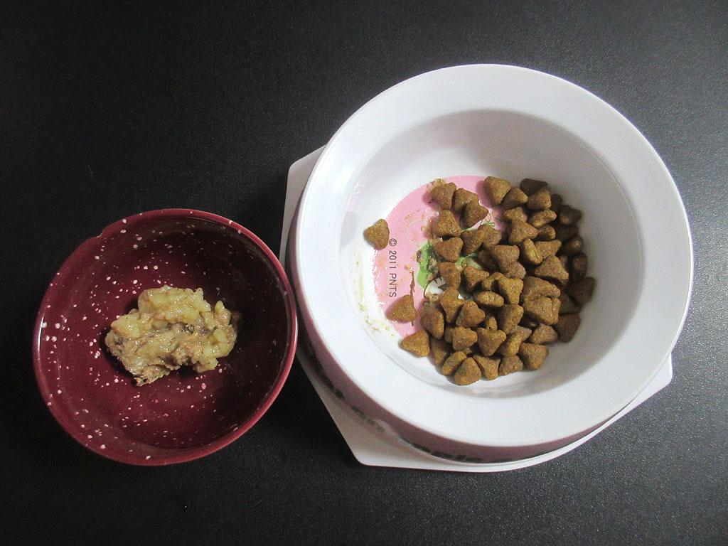 「総合栄養食」を別皿に。