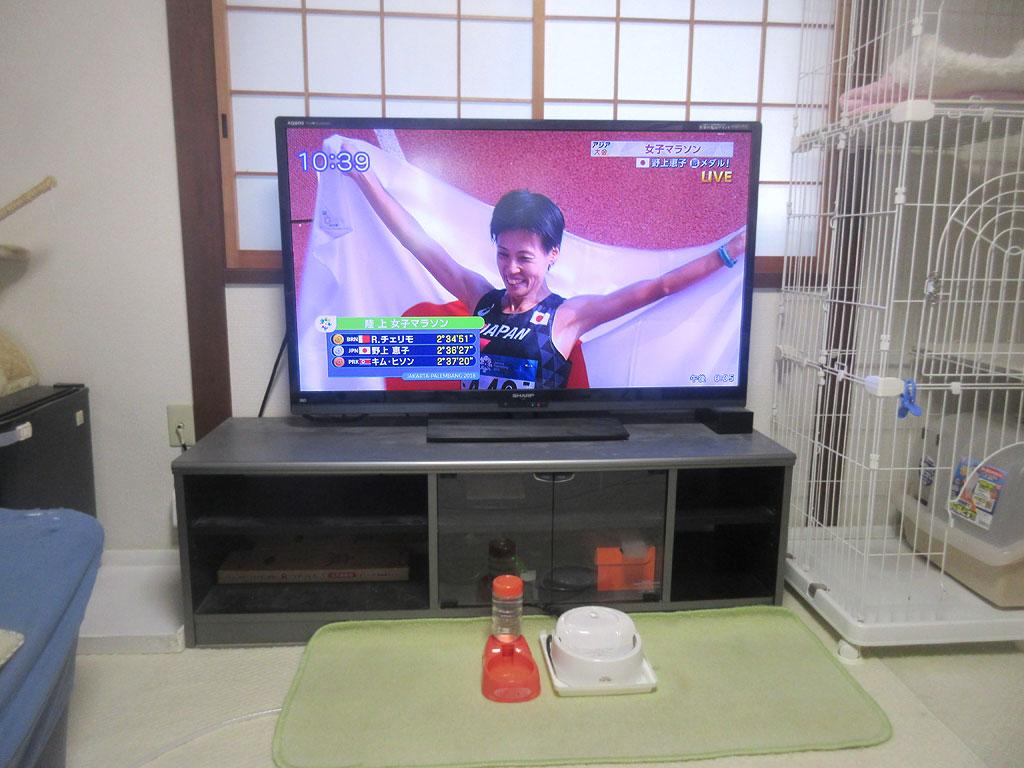 アジア大会の女子マラソン。