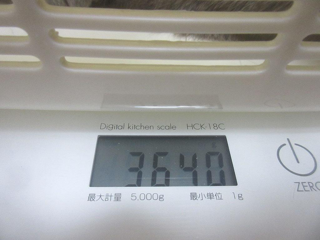 ロシ子の体重は回復していました。