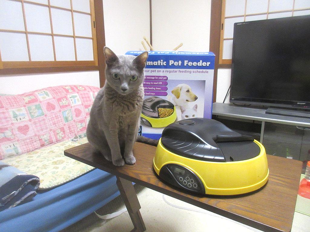 ロシ子と自動給餌器の記念写真。
