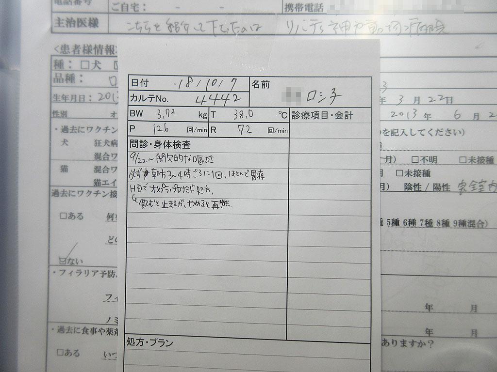 ロシ子の健康診断。