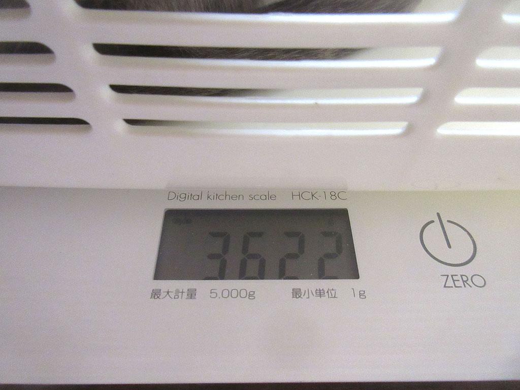 ロシ子の体重は3,622g。