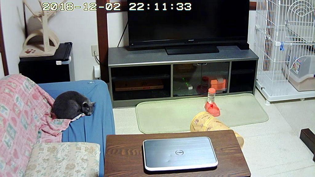 ウェブカメラの写真。