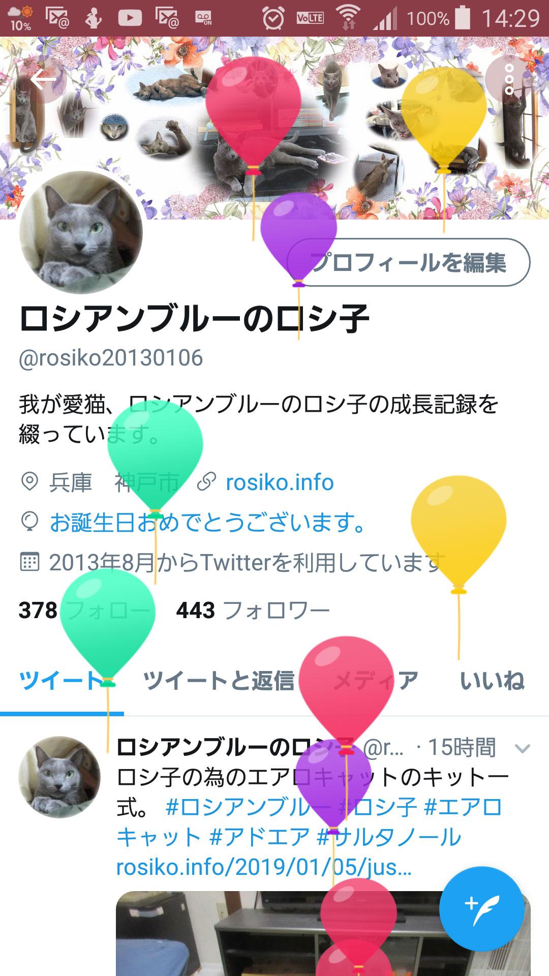 ロシ子、誕生日おめでとう!