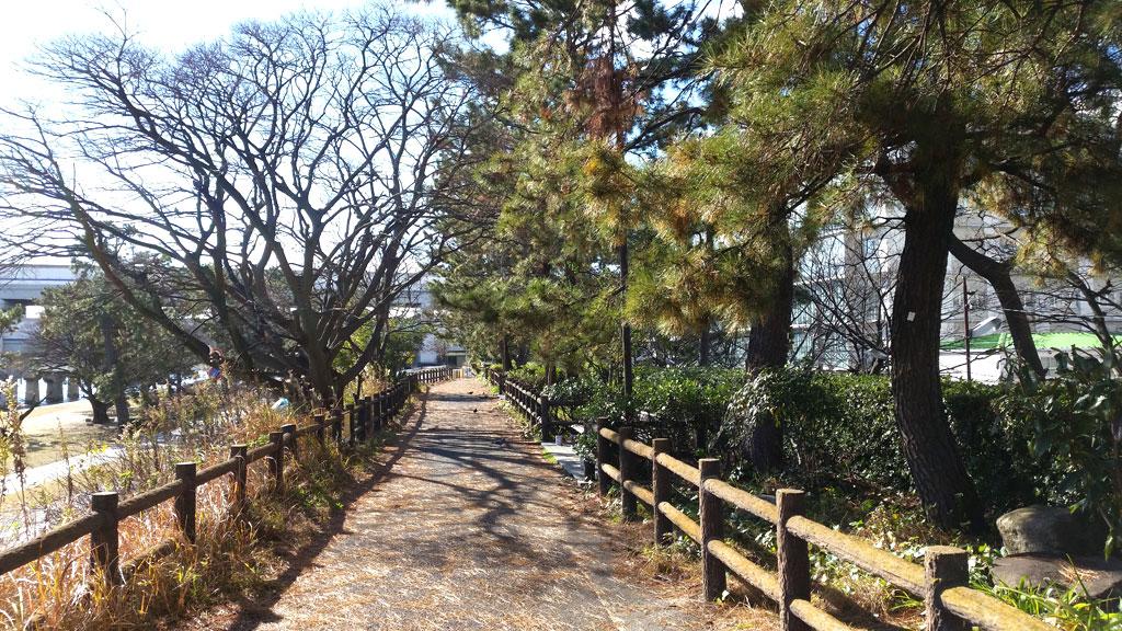 武庫川の遊歩道。