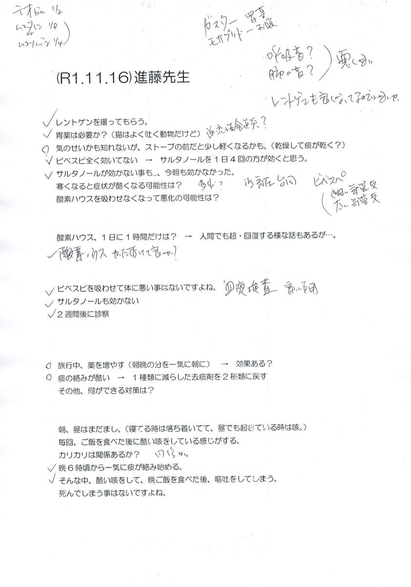 先生への質問のメモ書き