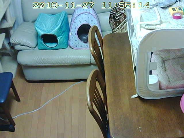 webcamera20191127_1156