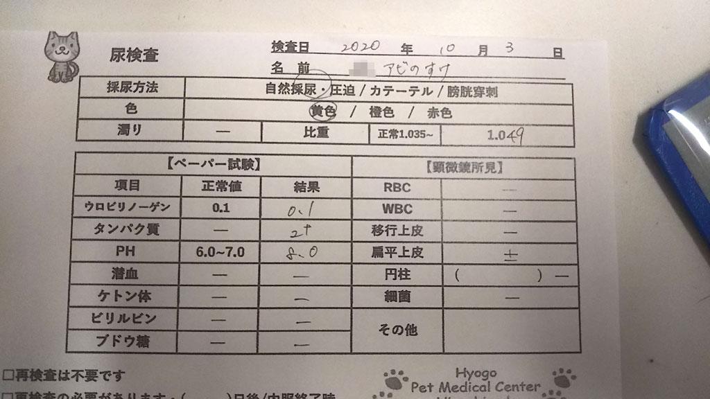 尿検査--20201003